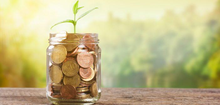 Garantiezinssenkung 2016/17 – Welche Bereiche sind betroffen?